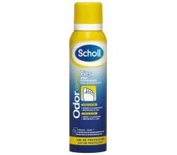 scholl desodorante